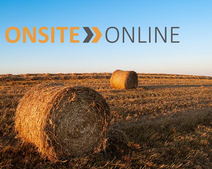 Onsite Online Logo and Branding
